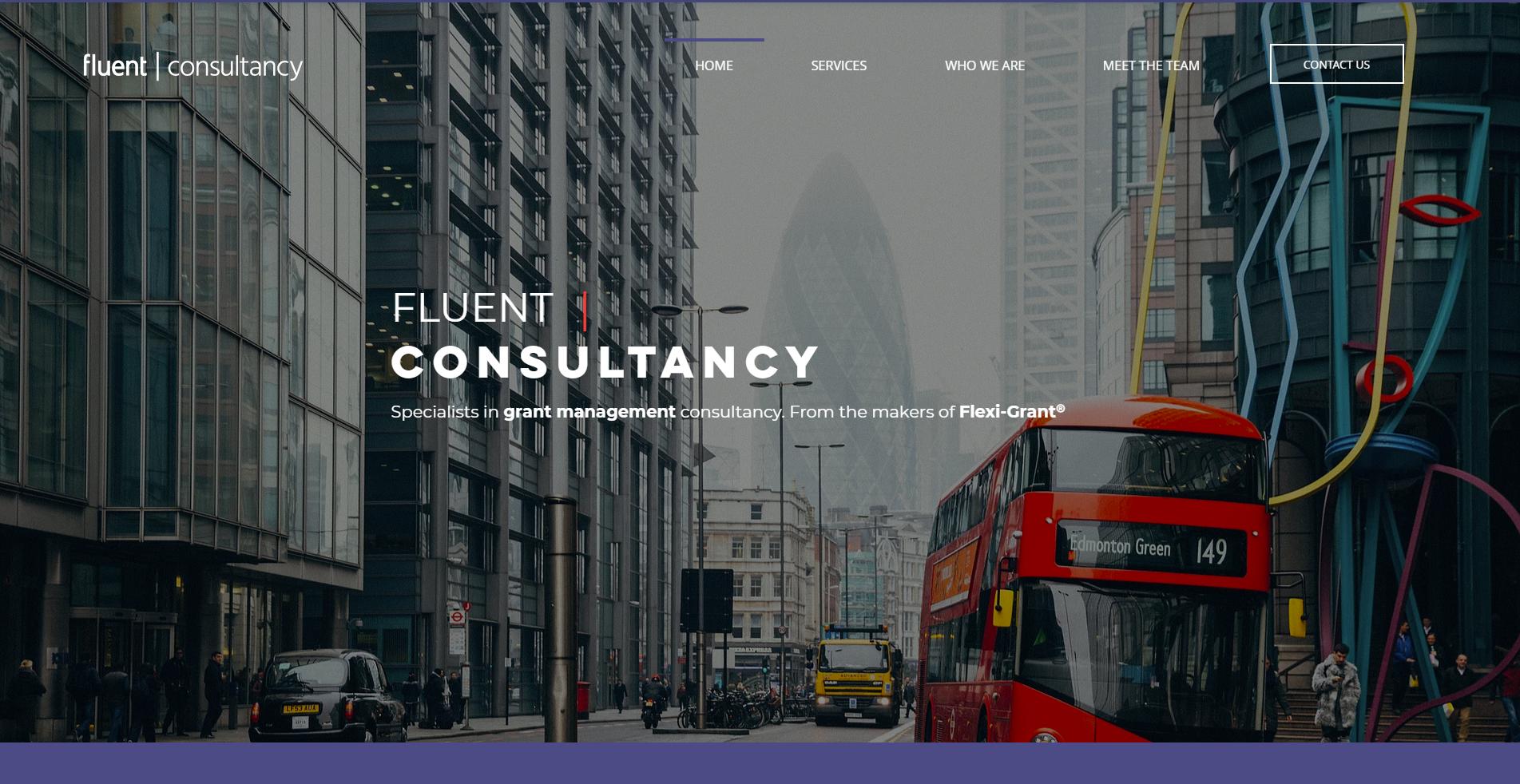 fluentconsultancy.com