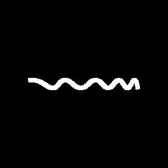 SPECTRUM LogoPrancheta 4@72x.png