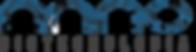 nanobiotec logo.png