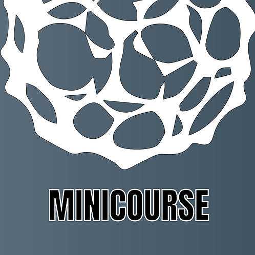 "MINICOURSE ""Nanostructures: principles and applications"""