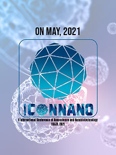 Cartaz do ICONNANO.jpg