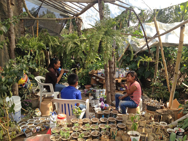 Garden of Hope Permaculture Center