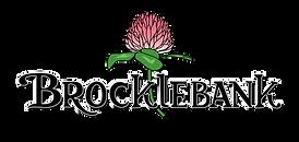 Brocklebank Logo Color Clear Background.