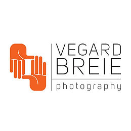 VB_logo_orange_copy_copy.jpg