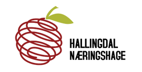logo_hallingdalnaeringshage_komplett_400