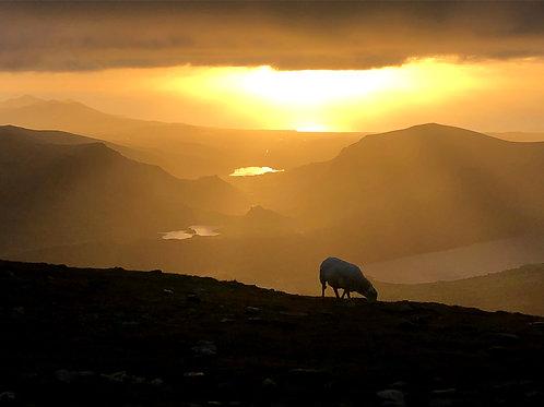 Snowdon Sunset Walk
