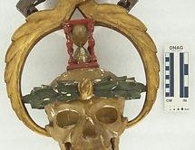 Symbol of Anthropology Science_01.jpg