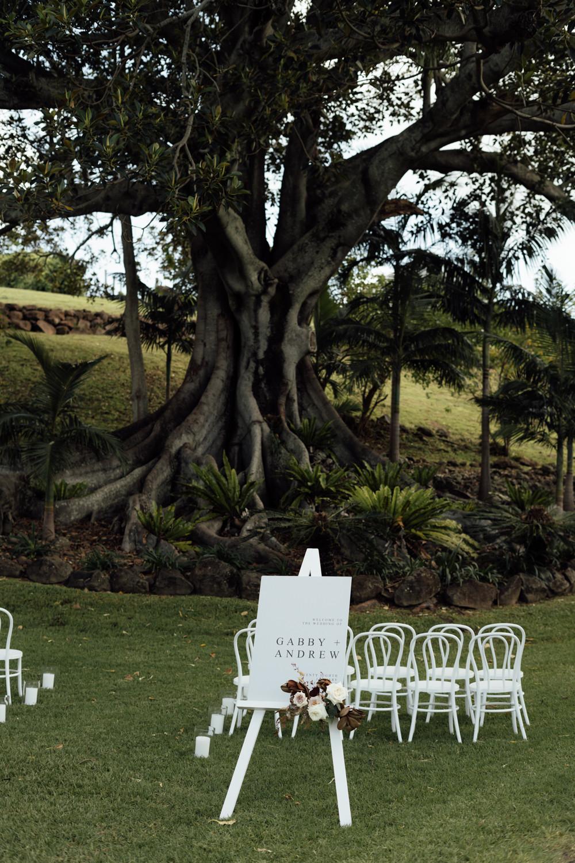 Outdoor wedding ceremony under a fig tree