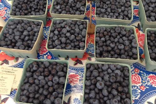 Blueberries From Green Reaper Farm