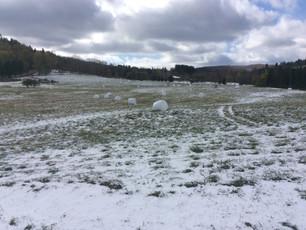Snowy Start to the Winter Season!