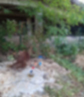 sismique_2.jpg