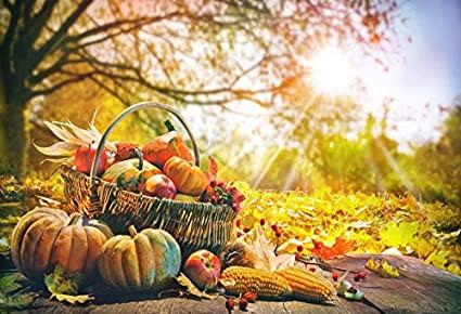 Pumpkin day and Halloween