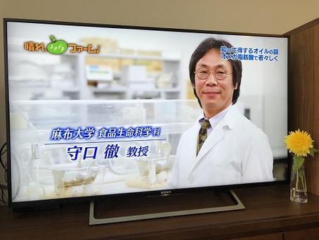 NHK BS3「晴れ、ときどきファーム!」に守口教授がご出演!