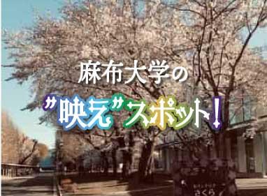 """麻布大学の""""映え""""スポット"""