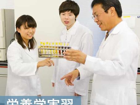 授業紹介: 栄養学実習 【食の機能08】