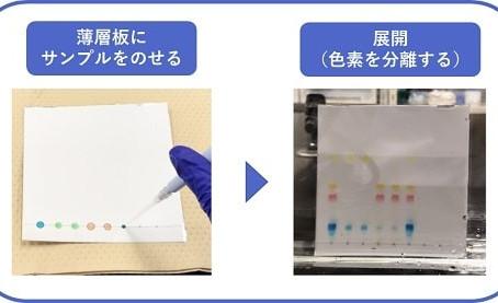 授業紹介:公衆衛生学実習②【食の安全 05】