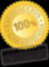 icon-satisfaccion-total-256x350-1.png