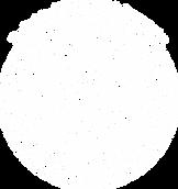 Logo The Sociey of NLP - MacMedian Carpenter México