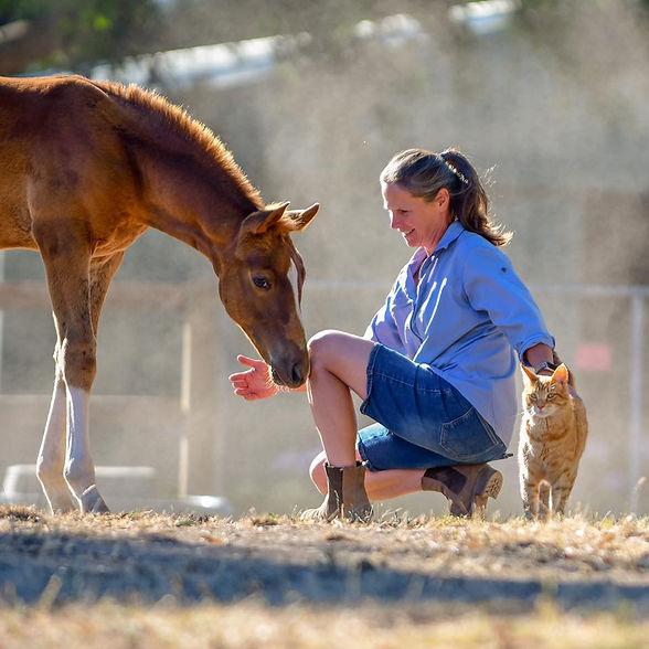 Lisa Foal.jpg