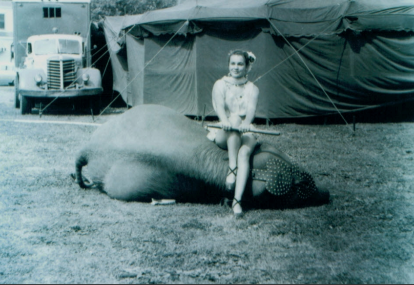 Circus%20pic%2C%20girl%20with%20elephant