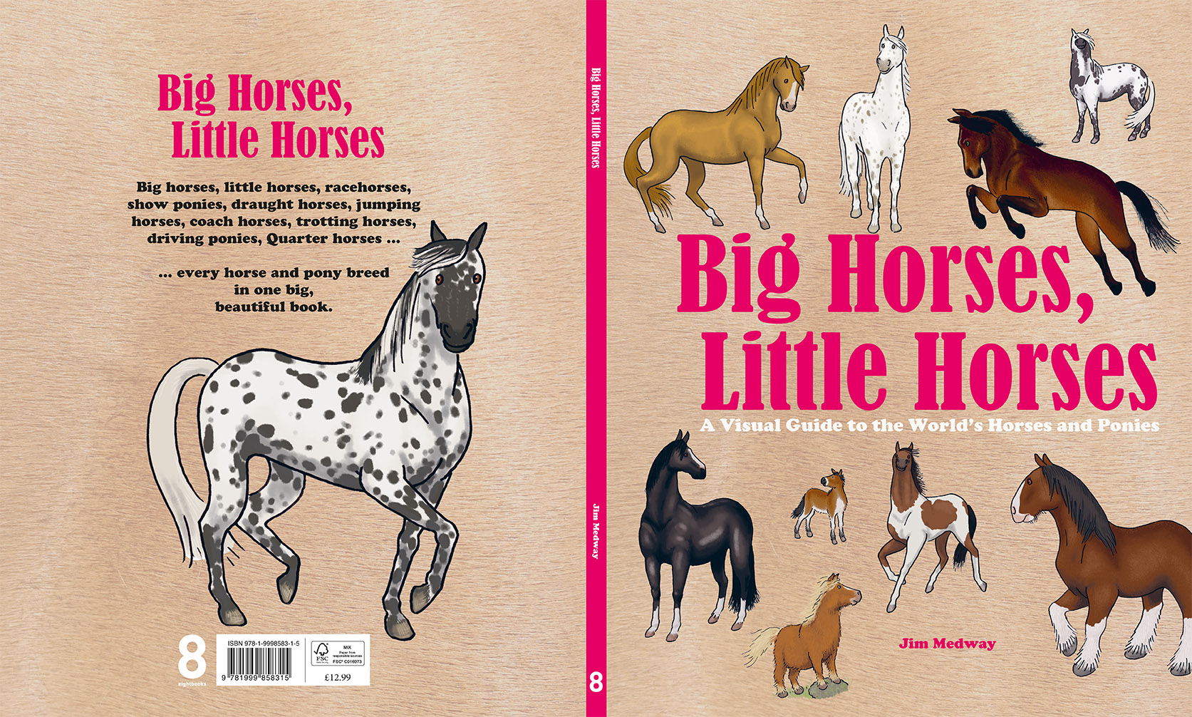 Big Horses Little Horses COVER 72dpi