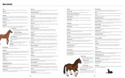 Big Horses Little Horses TEXTPAGES-16
