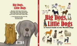 Big Dog Little Dog UK COVER vFINAL