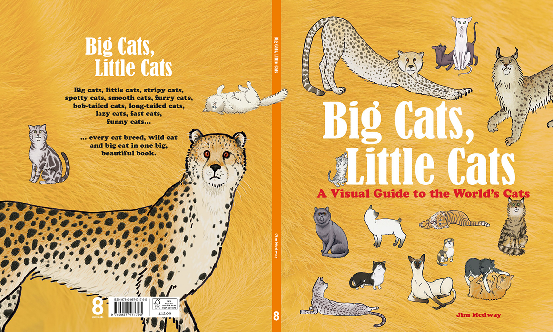 Big Cats Little Cats UK COVER