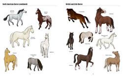 Big Horses Little Horses TEXTPAGES-5