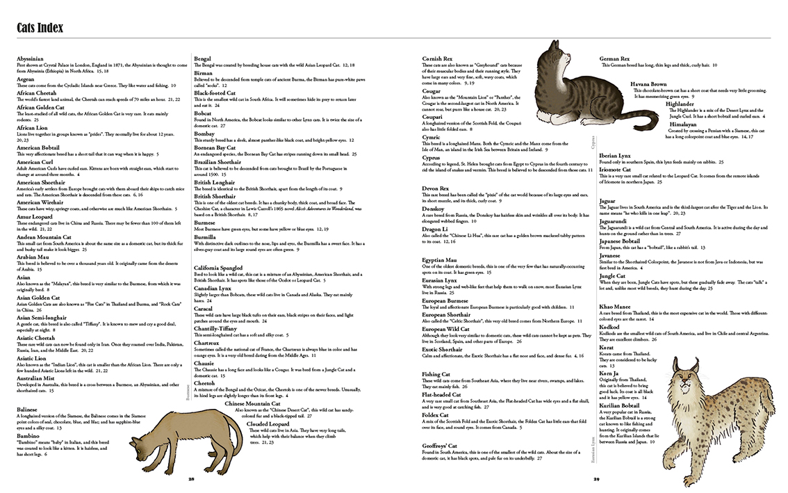 Big Cats, Little Cats | Award-winning books on Craft Beer, Spirits