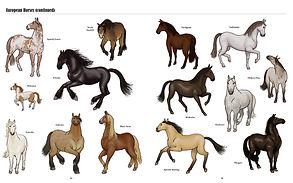 Big Horses Little Horses TEXTPAGES-8.jpg