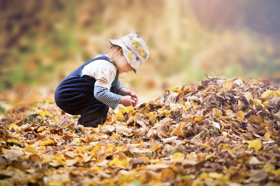 Childrens photography autumn