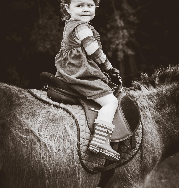 30 days wild donkey riding