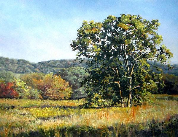 A Tree at Selma Estates by Mary Champion
