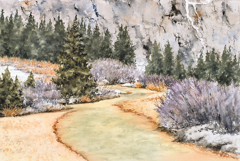 Red Mountain Creek: Toxic Beauty