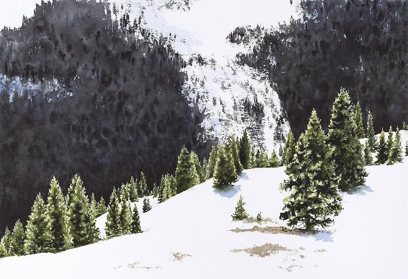 Backcountry Glade