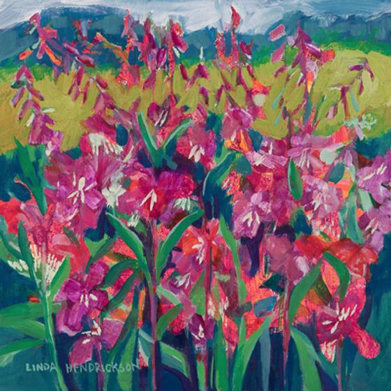 Fireweed by Linda Hendrickson