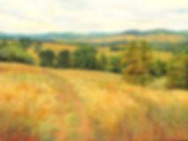 Sky Meadow Vista by Mary Champion