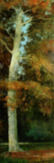 Longwood Gardens Sentinel by Web Bryant