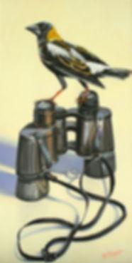 Bird Watching by Dana B. Thompson