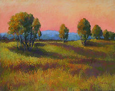 Evening Light by Libby Stevens