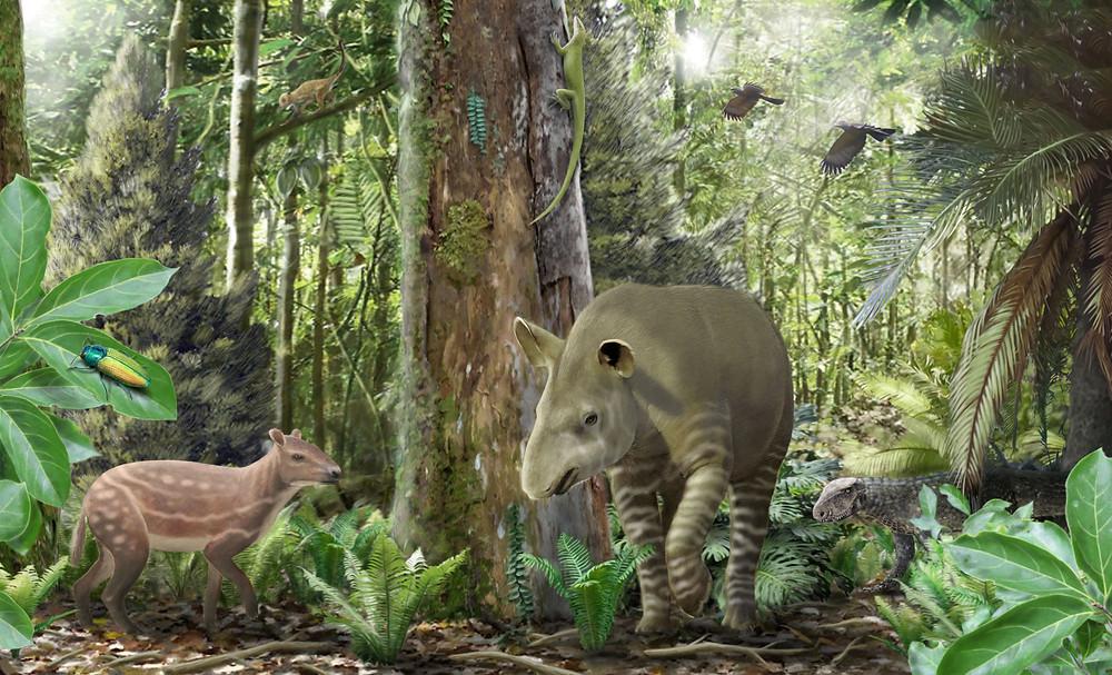 Ablak egy 47 millió éves ökoszisztémára. A geiseltali lelőhelyen feltárt egykori tőzeglápi erdőség jellegzetes állatfajai: bal oldalon a kisméretű ősló, aPropalaeotherium, középen aLophiodonnembe tartozó tapírféle, jobb oldalon félig a lombozat mögé rejtőzve pedig egy fiatal szárazföldi krokodil, aBergisuchus. (Az illusztrációt Szabó Márton készítette, forrás: Rabi Márton)