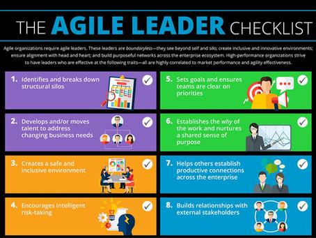 Getting to Nimble - Age of AGILE Leadership!