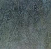 серый.jpg