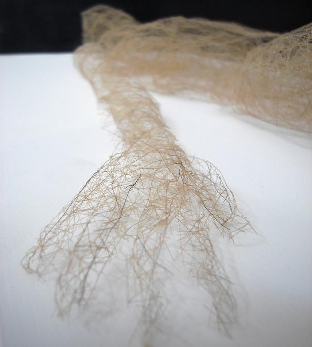 Body Hair (closeup)3.jpg