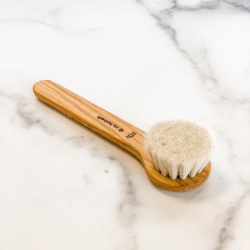 Dry Face Brush