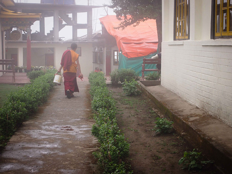 darjeeling, india, himalaya, kangchenjunga, hills, tourism, vacation, holiday, street photography, photo story, journalism, frame, map, display, window shop, mall