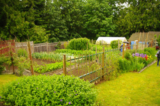 Community Self-Sufficiency: Introduction