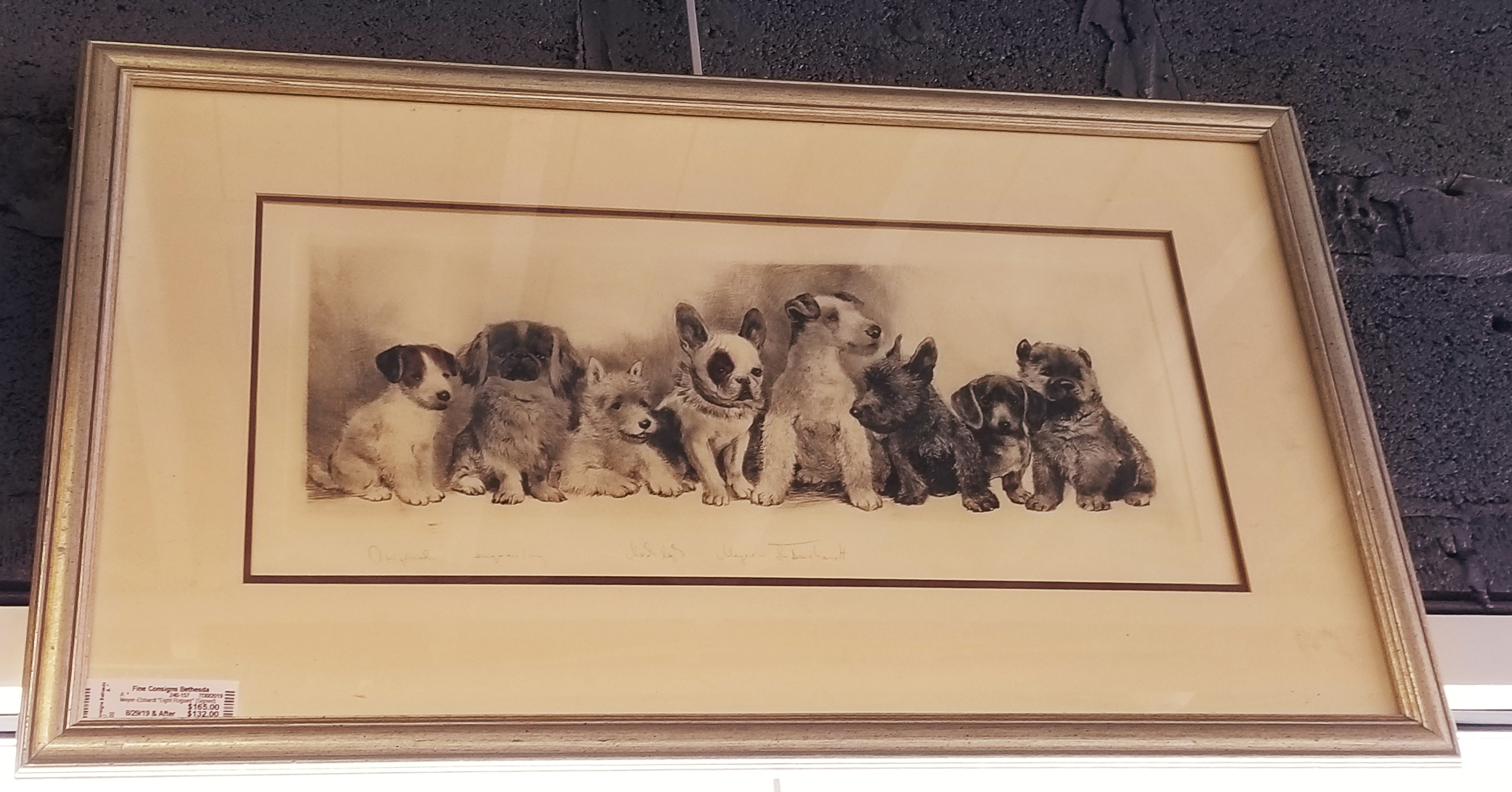 Hand drawing of small dogs