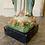 Thumbnail: Vierge aux roses
